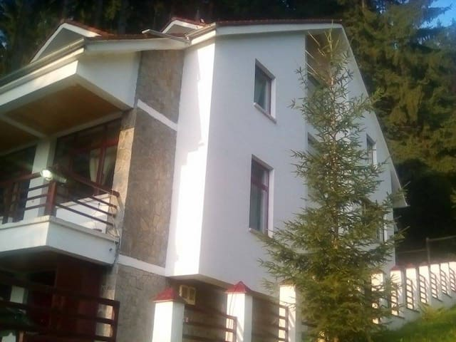 Lovely Peaceful Villa in Predeal - Predeal - Villa