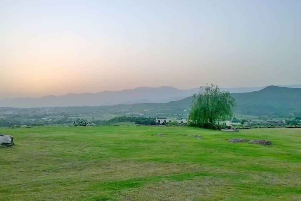 surrounding view