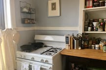 Large Serene Artist's One Bedroom in Logan Square