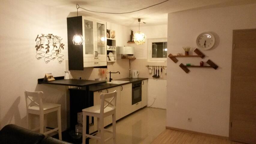 Gemütliches Ferienappartement für zwei. - Waldsee - Haus