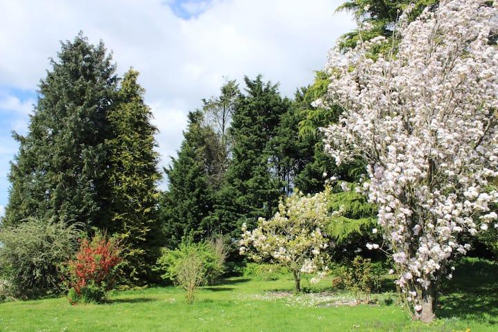 Gîte du Bien- Etre à Fleury la Forêt .