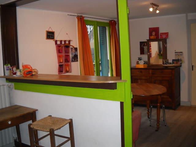 Bords de Loire du calme et de la convivialité - Ingrandes - Apartmen