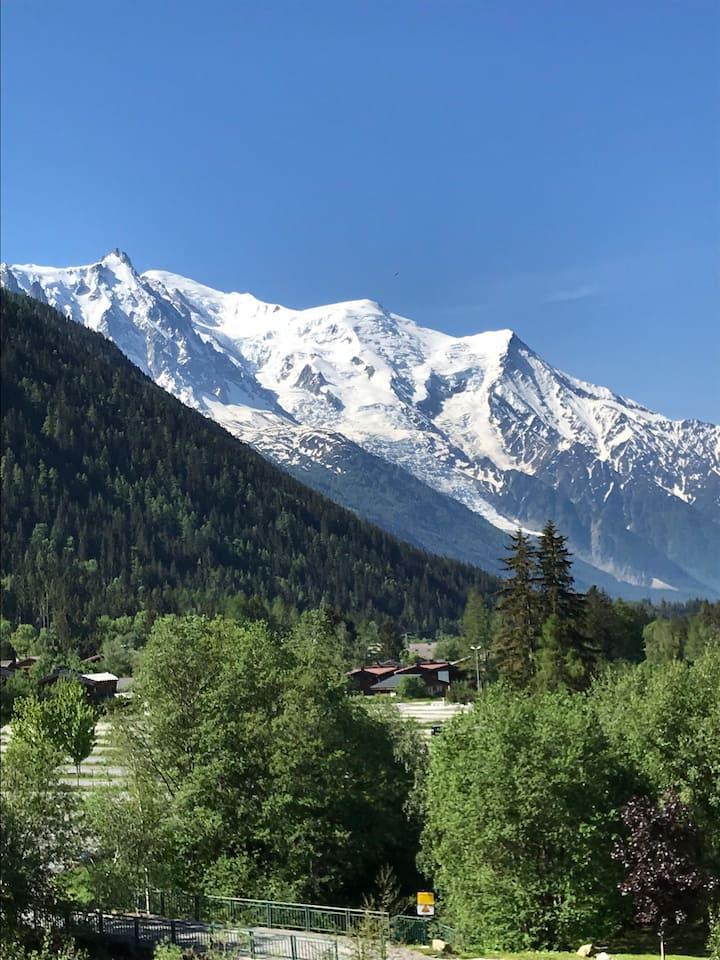 Magnifique vue sur le mont blanc