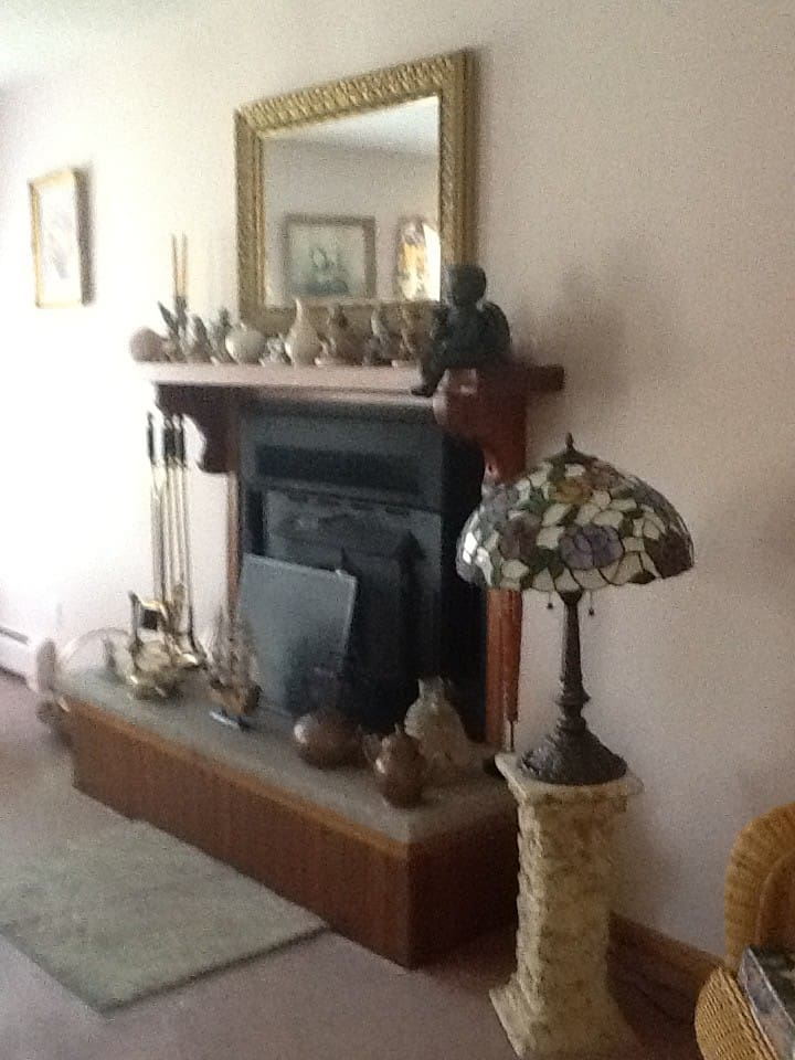 Fireplace in Victorian living room
