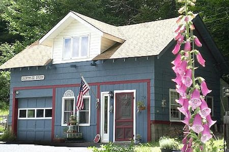 Shandelee Guest House - Livingston Manor - Kabin