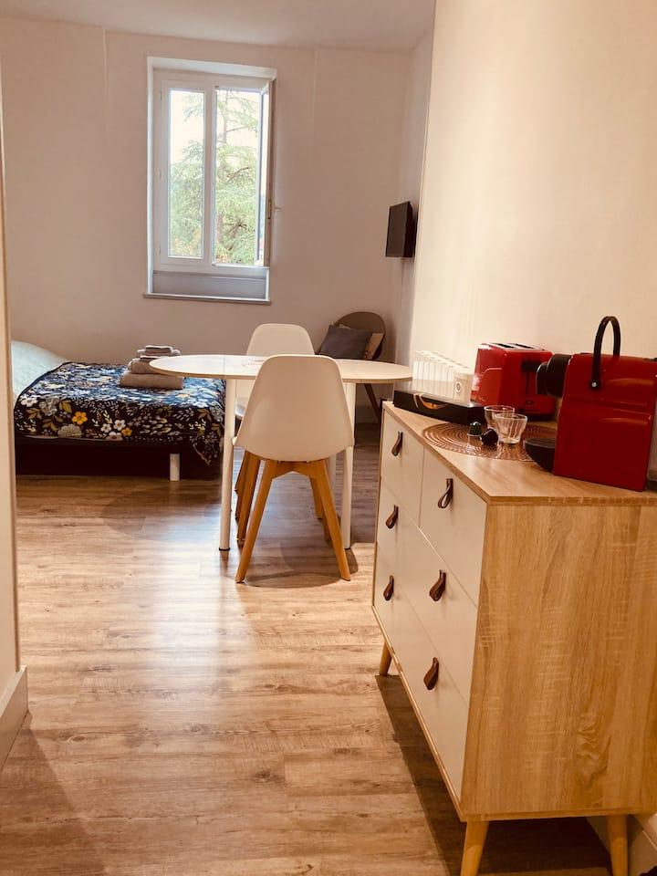 Studio cocon Rouget de Lisle / centre ville