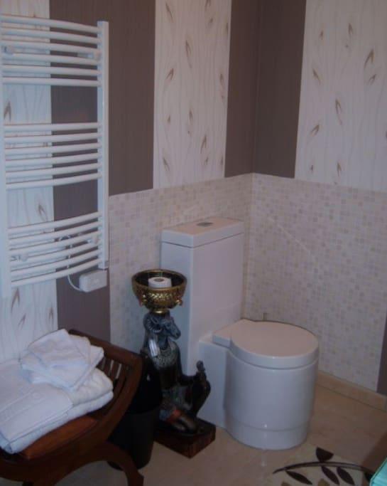 Salle de bain de la Chambre Egypte