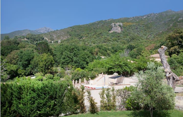 """""""FELICINA"""" montagne, mer, vignobles - Patrimonio - Hus"""