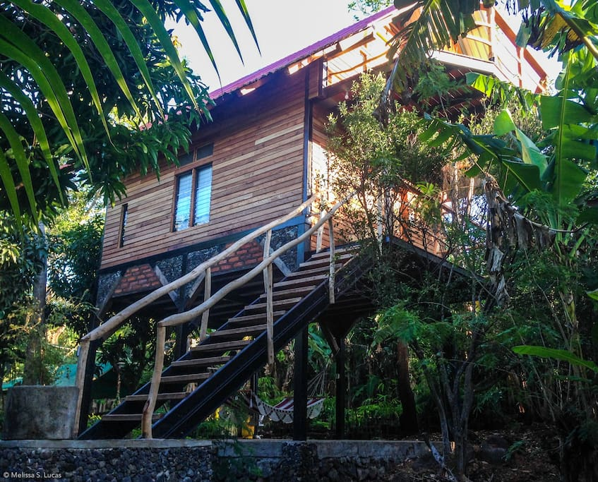 Majestic home in a tropical forest, awaiting your arrival
