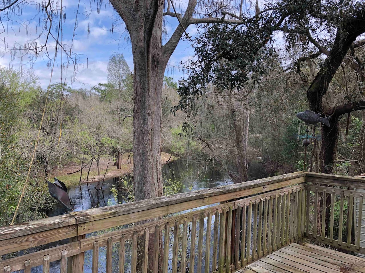 The river from the back deck. A great place to enjoy your morning coffee and watch the wildlife.