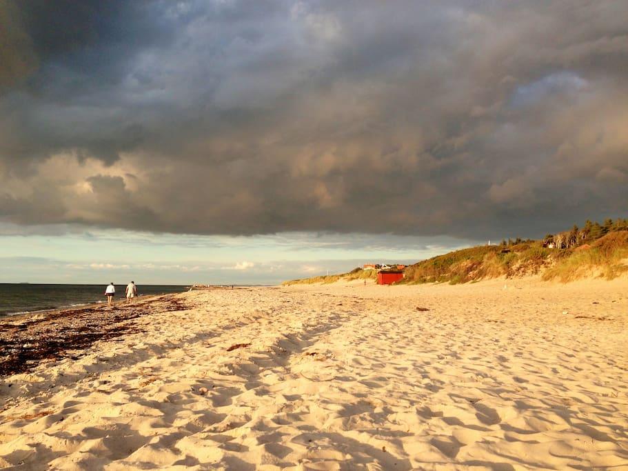 Stranden mellem Tisvildeleje og Liseleje
