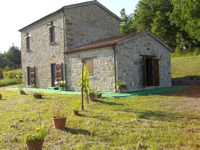 Camera Quadrifoglio in Country House nel Cilento