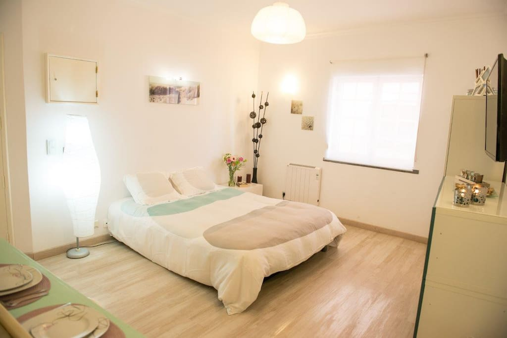Studio nice and cosy appartements louer cascais for Chambre a louer sur nice