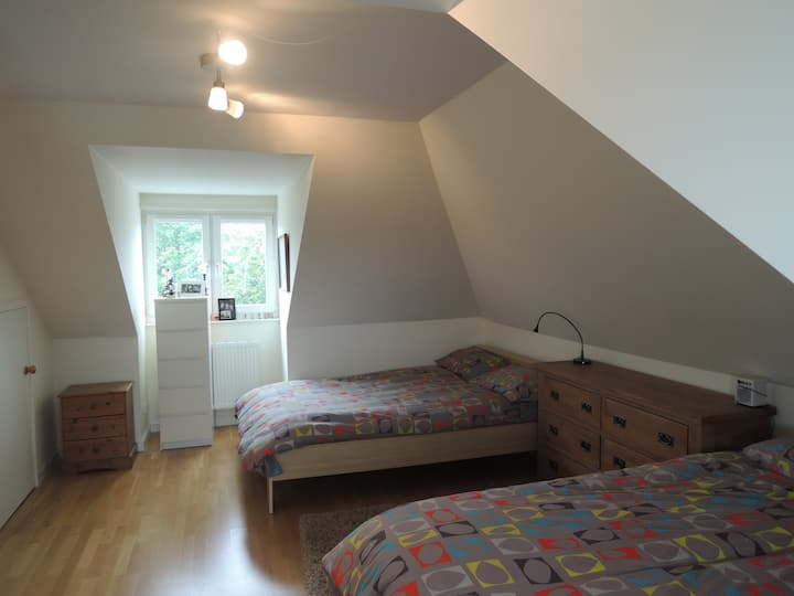 A large bedroom with ensuite, king and single beds