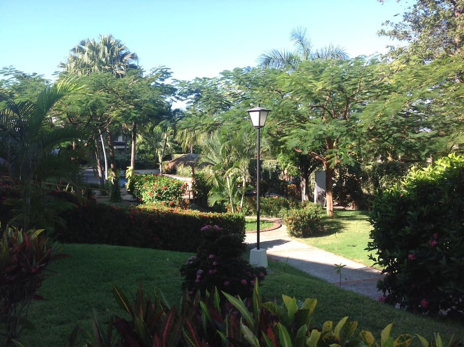 the condo complex surrounded by colorful flowers, swimmingpool and a very nice garden