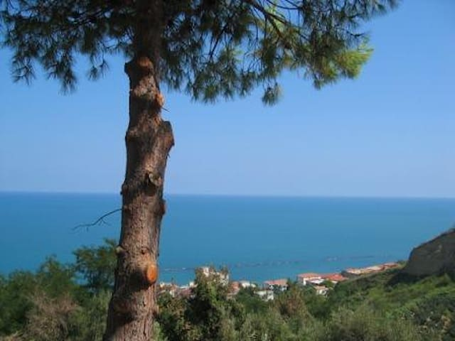 Beach apt with stunning sea view - San Vito Chietino - Daire
