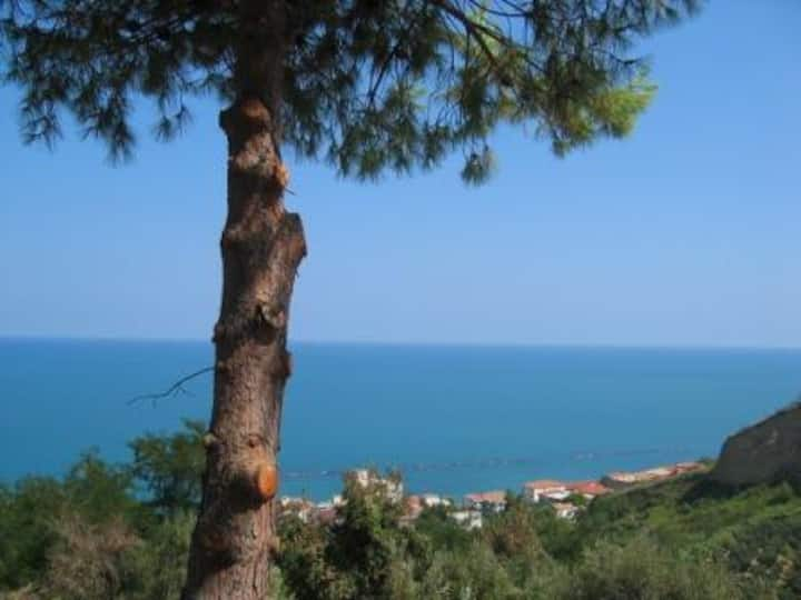 Apartment with seaview, garden, walk to beach.