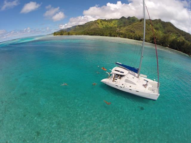 CATAMARAN AU  MOUILLAGE RANGIROA - rangiroa  - Boat