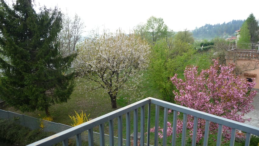 "A very nice location in ""Langhe"" - Bossolasco - Apartment"