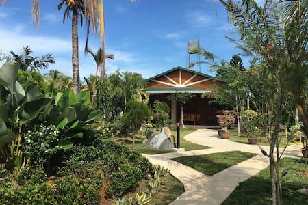花园民宿小木屋郁金香房Garden Homestay:Tulip5 - Penampang - Casa