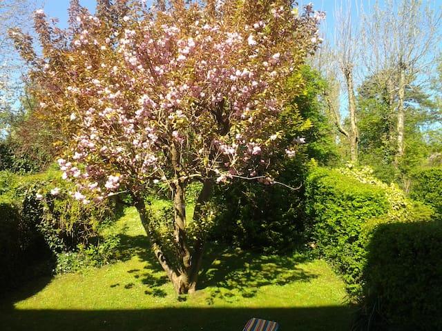 Appartement avec jardin tennis - Saint-Arnoult - Apartament