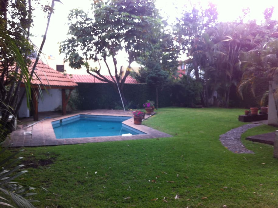 Lovely garden with trees and pool