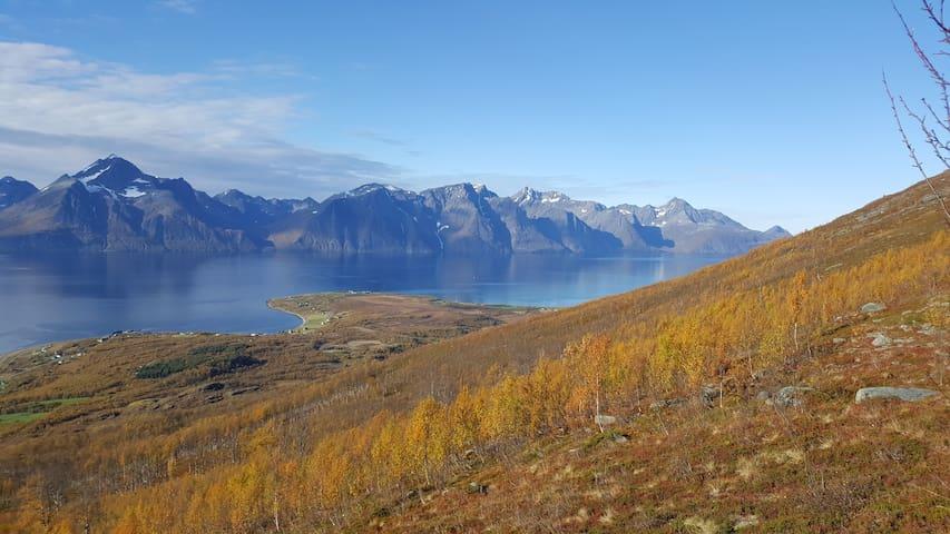 Lyngen Arctic View- Summit skiing + Nortern Light