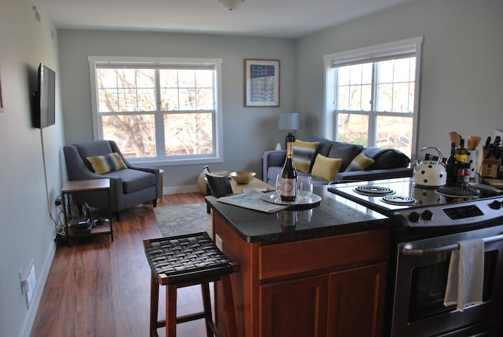 Newly Built Condo in Downtown Traverse