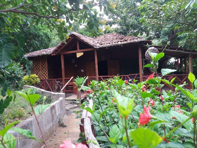 Rustic Cabin, 5min walk to San Juan beach/center