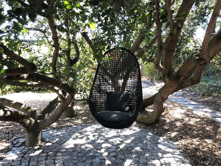 Hanging Chair in Milkwood Tree