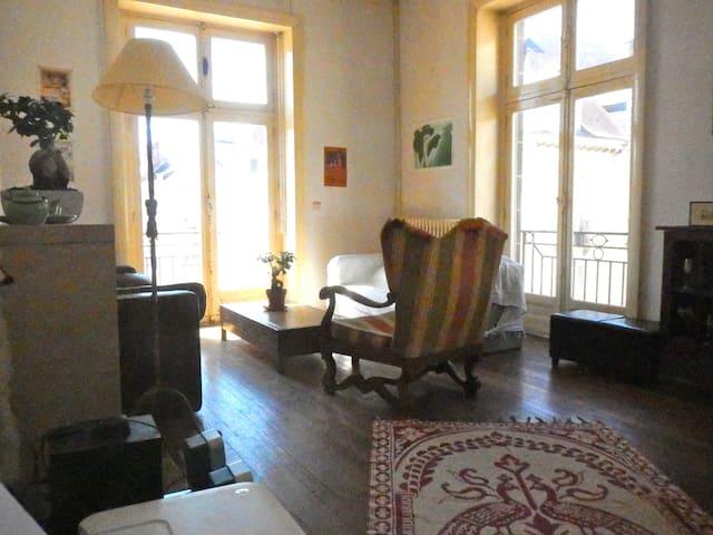 Appartement 80m2 coeur de ville - 南特 - 公寓
