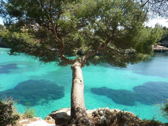 Cala d'Or Mallorquinischer Traum direkt am Meer