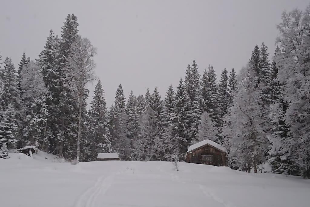 Urvassbua og uthuset. Utedo i skogen til høyre for hytta.