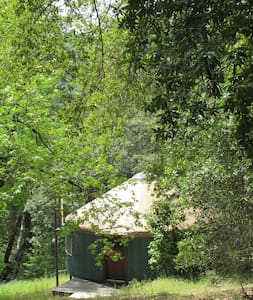 Peaceful Yurt on Beautiful Land - Laytonville