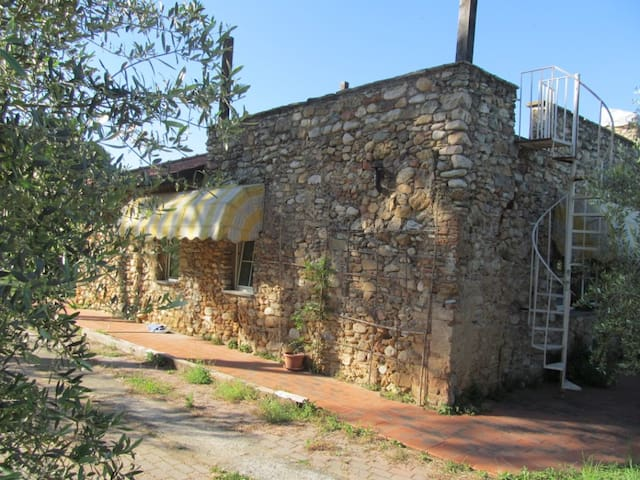 STONE house- 1BR in Olive farm - Albenga - House