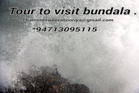 Visit to bundala - Hambantota - Penzion (B&B)