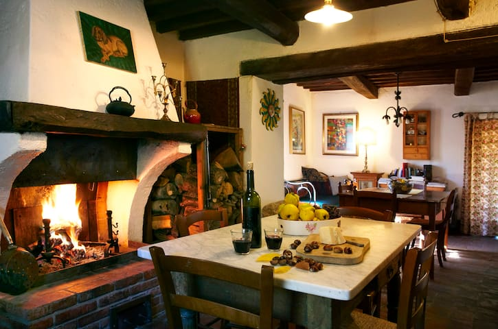 Ancient stone farmhouse Amiata - Saragiolo - Appartement