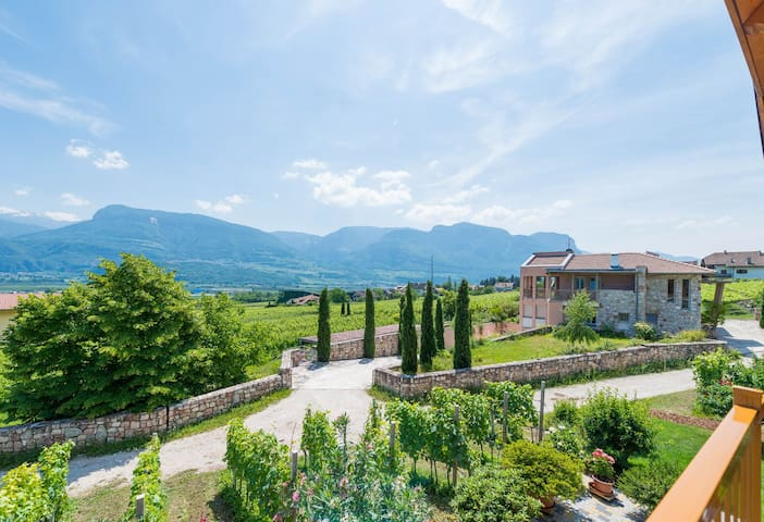 Apartment with 2 bedrooms on the Wein Route - Termeno sulla Strada del Vino - Apartemen