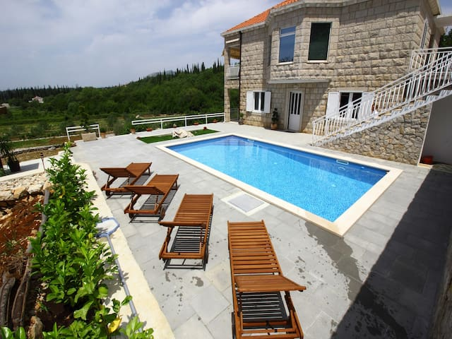 Comfort Villa with Terrace and Pool - Čilipi - Huoneisto
