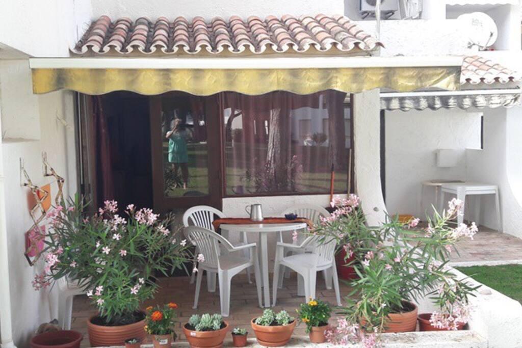 Terrasse égayée de plantes...