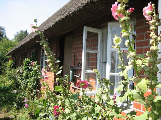 Idyllic country house with WiFi - Sakskøbing - House