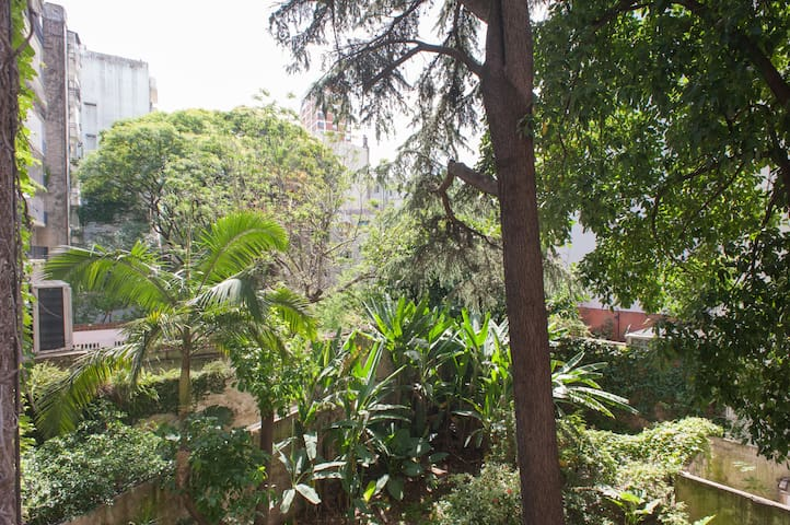 Comfortable, spacious & bright downtown Recoleta!
