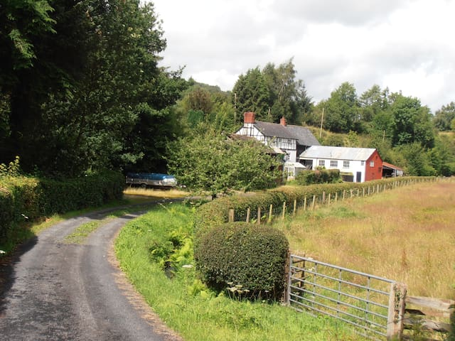 Bed and Breakfast in Mid Wales - Caersws - Гестхаус