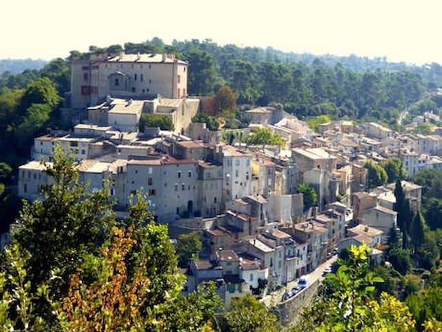 Maison de caractère près du château de La Verdière - La Verdière - Apartment