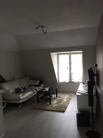 appartement 3 piece - Thiais - Apartment