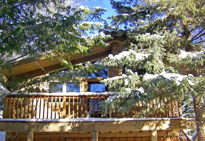 Downtown Hideaway In The Trees, - Ketchum - Appartement