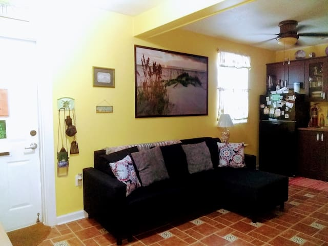 Sanitized living/kitchen area, Full size sofa bed.