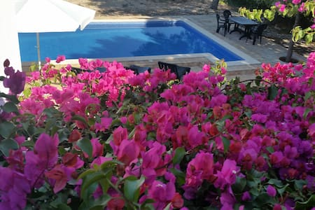 House at  Algarve orchard, near golf and beaches. - Lagoa - Villa