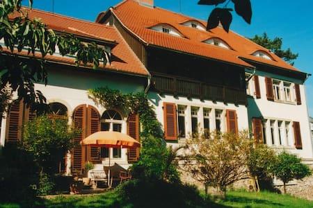 Villa Sunnyside 2 - Dresden - Villa