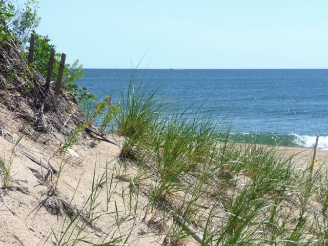 Plum Island Gem!  Private Condo-- Steps to Beach! - Newbury - Wohnung